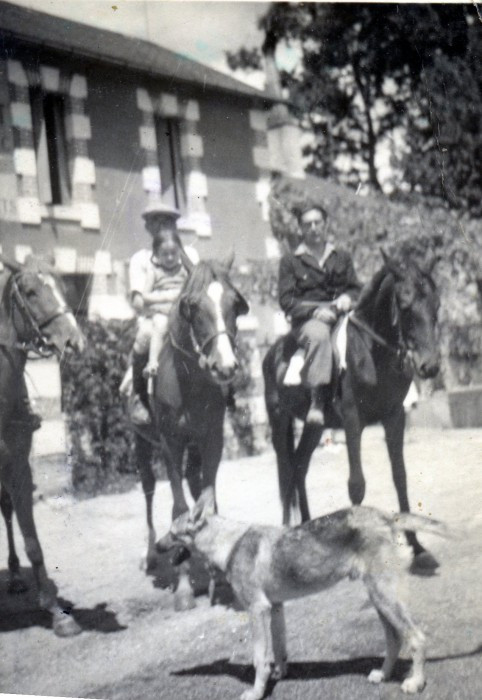 30s? Hector? dog, horse272