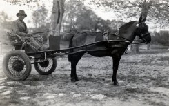 30s_Libourne_Hector_Lasserre_horse_carriage