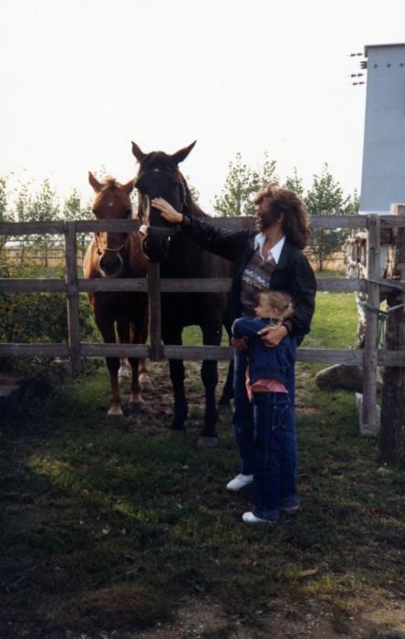 81 DK horses122