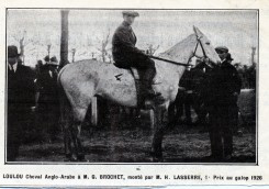 26 Hector newspaper clipping, horse Loulou