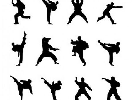 Opera and kung-fu training
