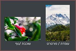 photo orientation.jpg