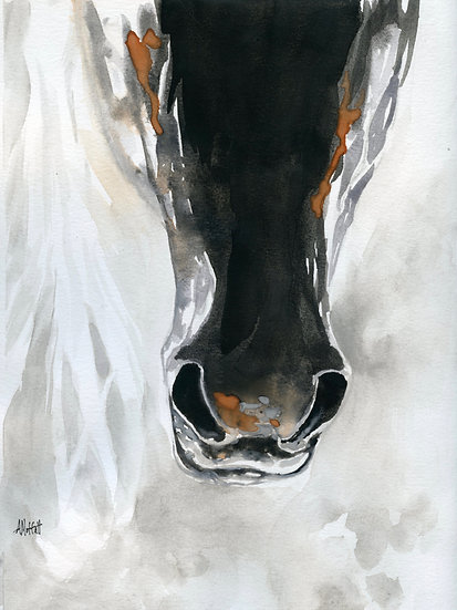 The Muzzle of a Horse - Original Watercolor Painting