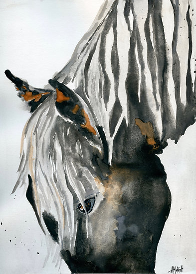 Dark Horse Head Down - Watercolor Painting
