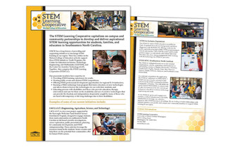 STEM LC One-sheet