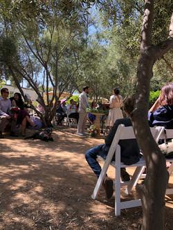 Elisa & Nick's Garden Wedding Ceremony