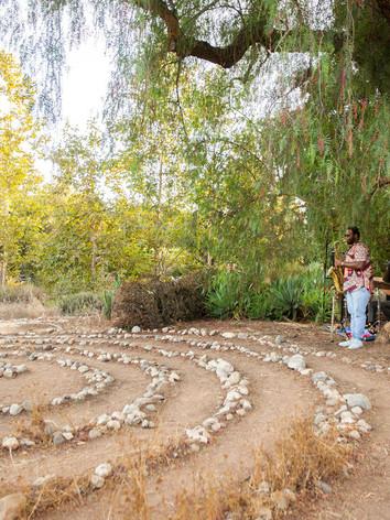 AutumnintheGarden246.jpg