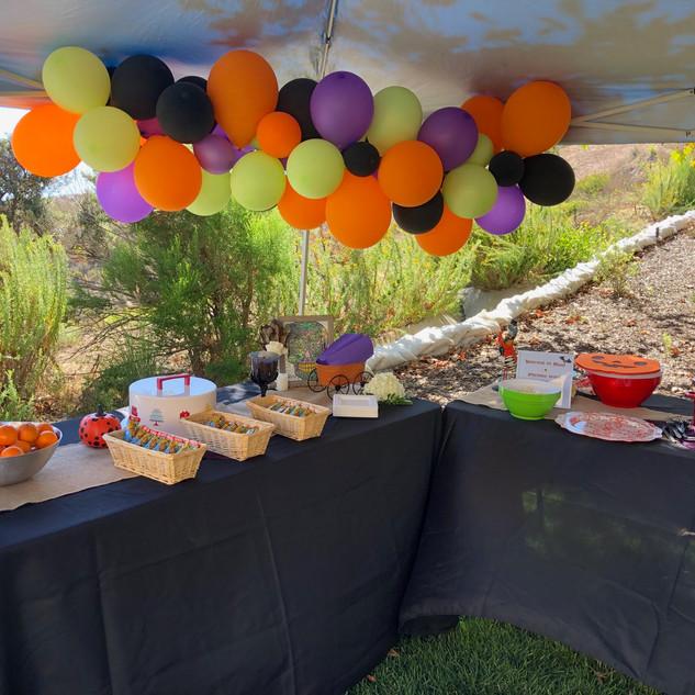 Birthday Party Balloons & Food Table.jpg