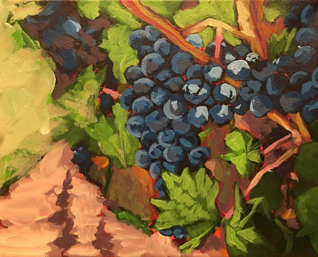 Parables in the Vineyard