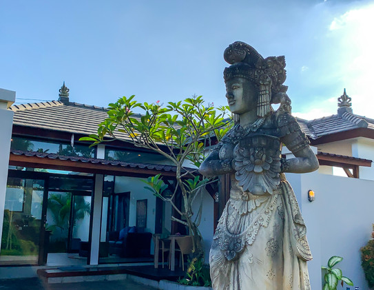 Villas for rent near Monkey Forest the house