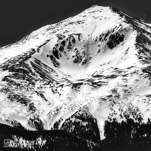 Mt Elbert Ski Tracks Metal Print