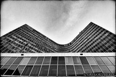 Curves of the City - Brussels, Belgium