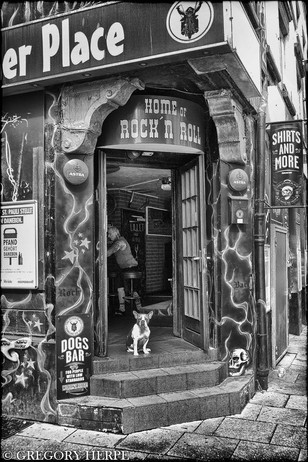 Dogs Bar - Hamburg, Germany