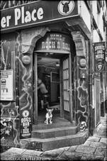 Dogs Bar - Hamburg, Germany