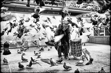 The one who talks to the Pigeons - Paris, France