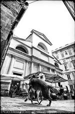 Dancing Queens - Genoa, Italy