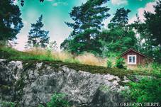 Green is the New Black - Seurasaari, Finland