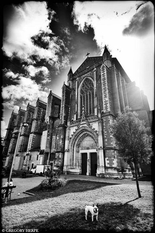 The Small Bishop - Toulouse, France