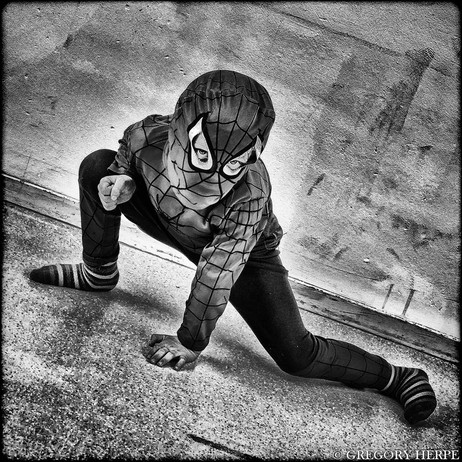The True Spiderman