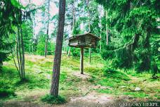 The Little House on the Tree - Seurasaari, Finland