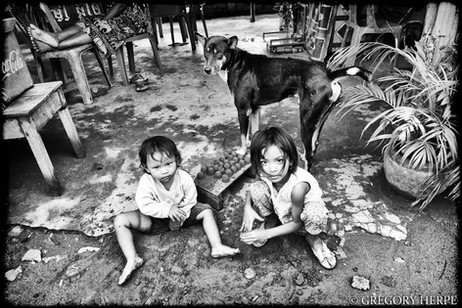 My Dog's Eyes - Preak Thmey, Cambodia