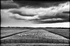 A Flat Country - Kinderdijk, The Netherlands