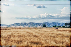 What if David Lynch was in that truck? - Caucasus Azerbaijan
