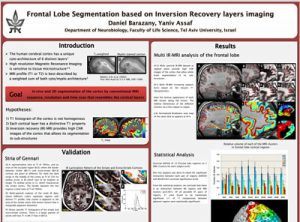 Frontal lobe segmentation based on inversion recovery layers imaging
