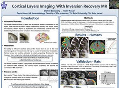 Cortical layer imaging with inversion recovery MRI