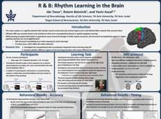 R&B: Rhythm learning in the brain
