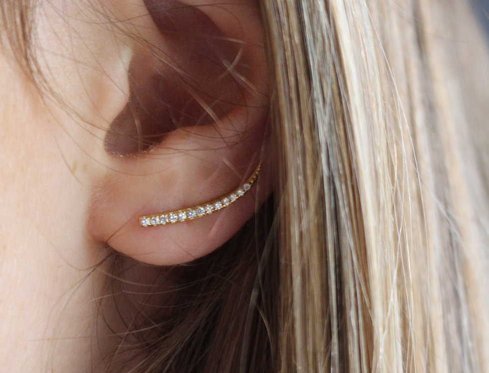 Stone Set Climber Earrings