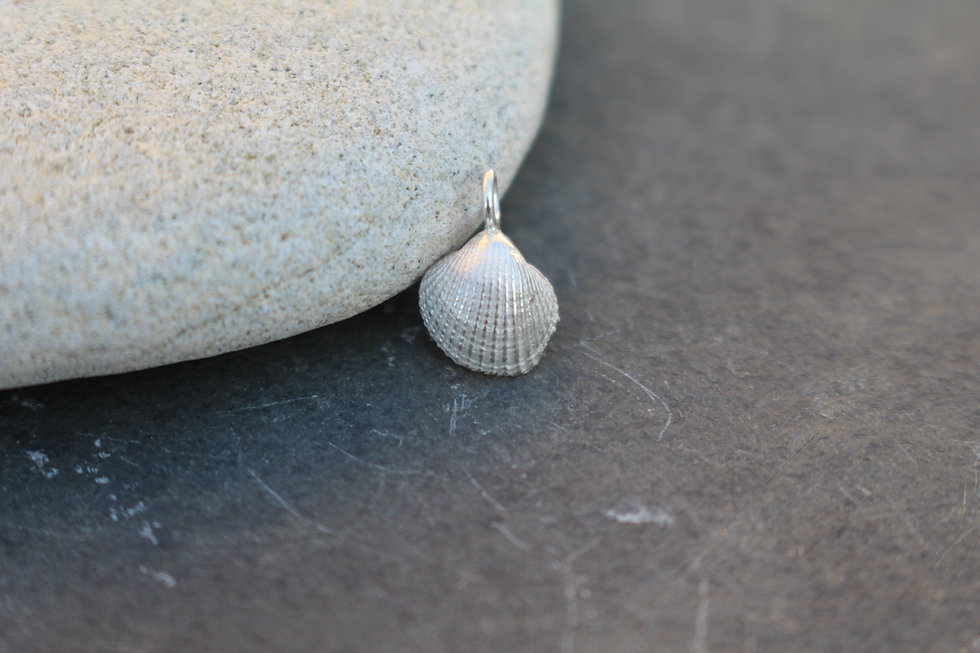Silver Tiny Clam Shell Charm