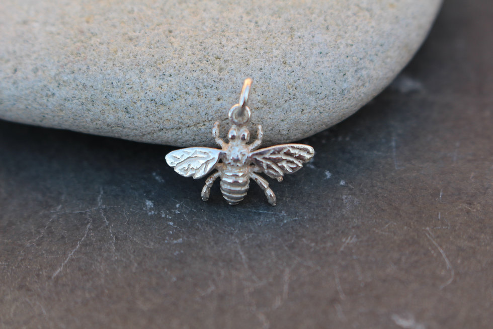 Silver Frosted Wasp Charm