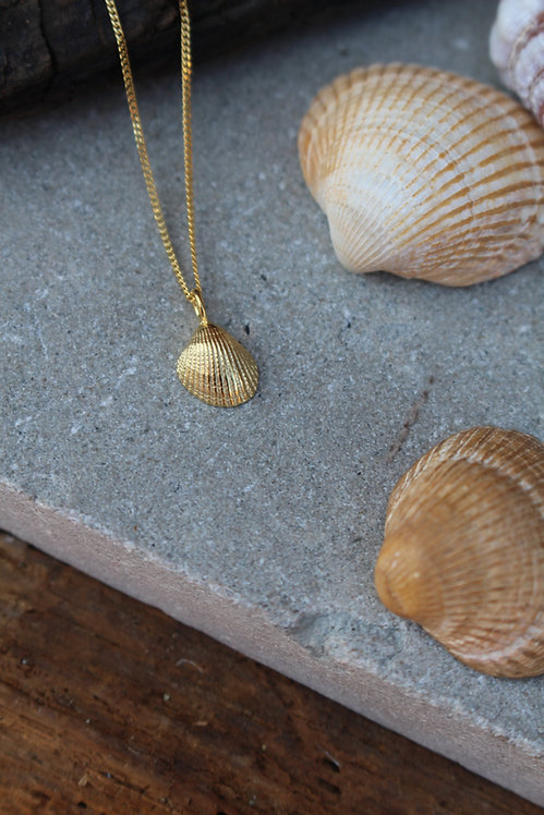 Gold Tiny Shell Necklace