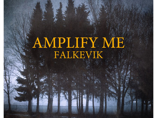 New single Amplify me! Release April 30th!