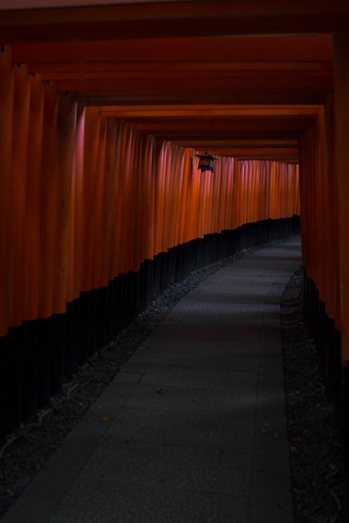 Fischer_Portfolio_Japan-29.jpg