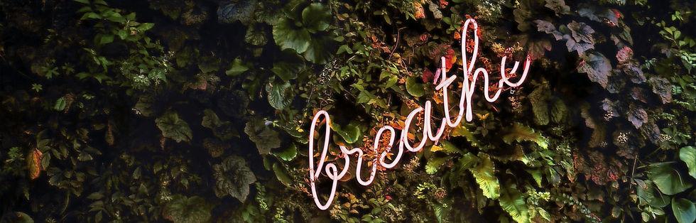 Breathe Yoga TCM