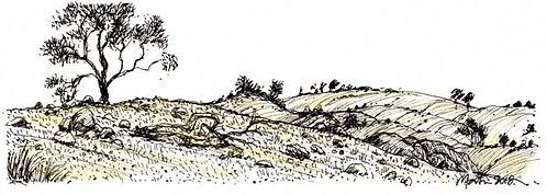 LANDSCAPE 9. Drawing