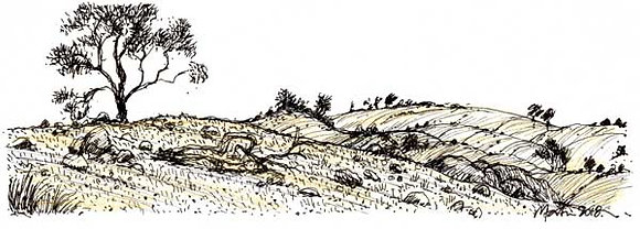 LANDSCAPE 9. Drawing
