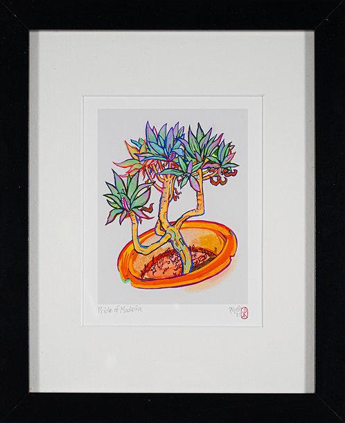 Pride of Madeira. Digital Giclée Print by Pirie Martin