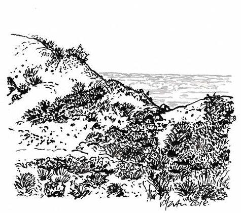 LANDSCAPE12. Drawing