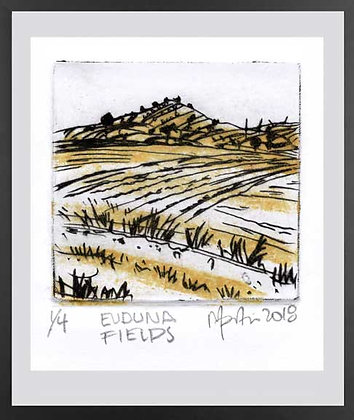 Eudunda Fields