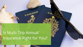 Is Multi-Trip Annual Insurance Right for You?