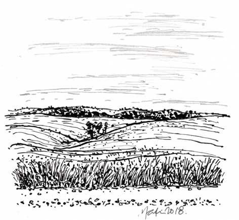 LANDSCAPE 11. Drawing