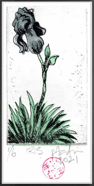 Iris. Etching with block printed elements by John Martin