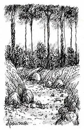 LANDSCAPE 8. Drawing