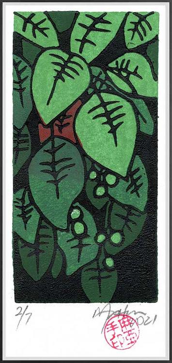 Bleeding Heart 3. Reduction lino print by John Martin