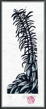 IRIS AND CORDYLINE.  Lino print