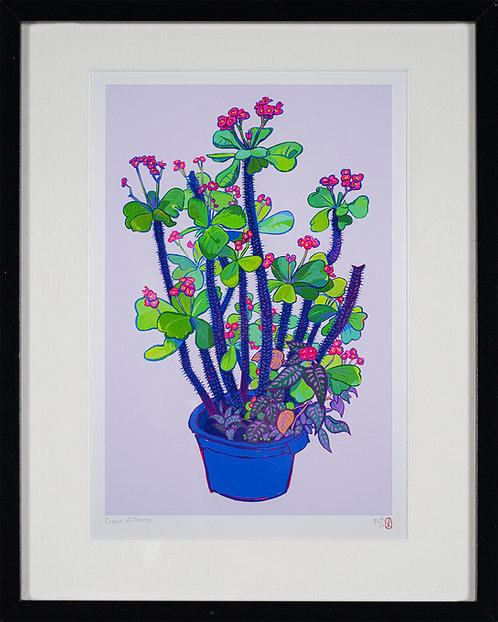 Crown of Thorns. Digital Giclée Print by Pirie Martin