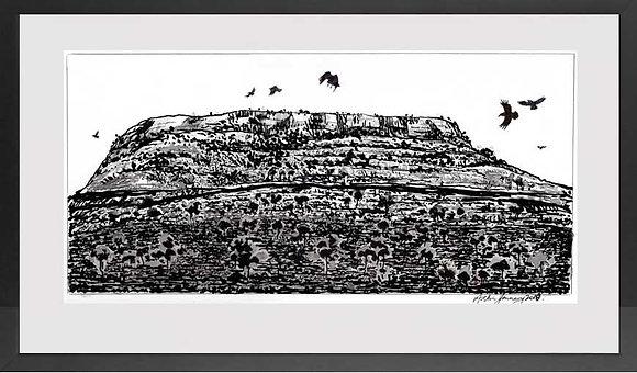 Crows up North